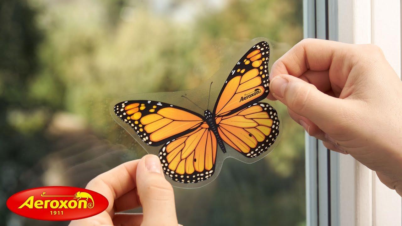 aeroxon fliegenk der insekten falter sicher wirksam gegen fliegen im haus youtube. Black Bedroom Furniture Sets. Home Design Ideas