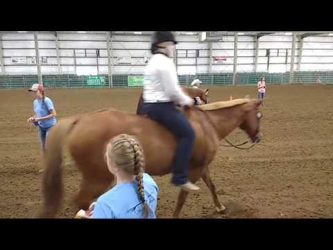 2019 Lancaster County Super Fair - 4-H Western Horse Show 3