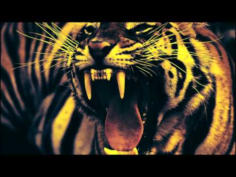 ShockFront - EYE OF THE TIGER (80s Metal Version)