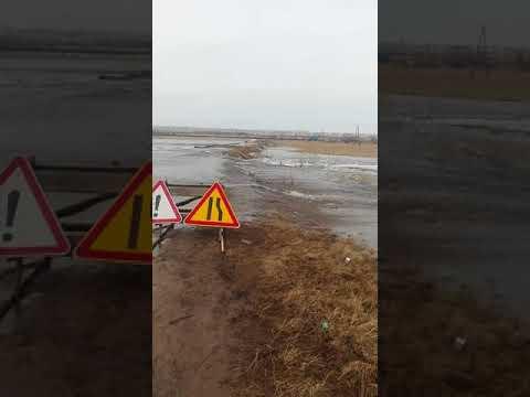 Паводок с. Солоновка Павловский район