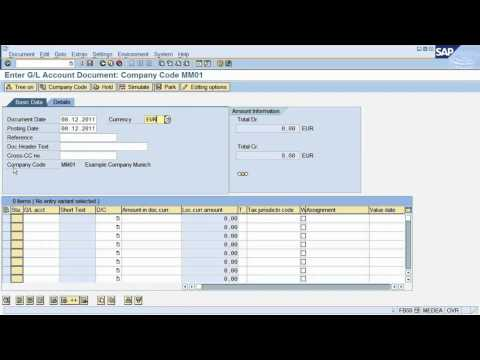 FS2. SAP tutorial : How to post a document in SAP Financial Accounting