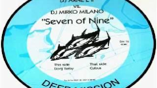 DJ Arne L II vs. DJ Mirko Milano - Cubus (Seven Of Nine)