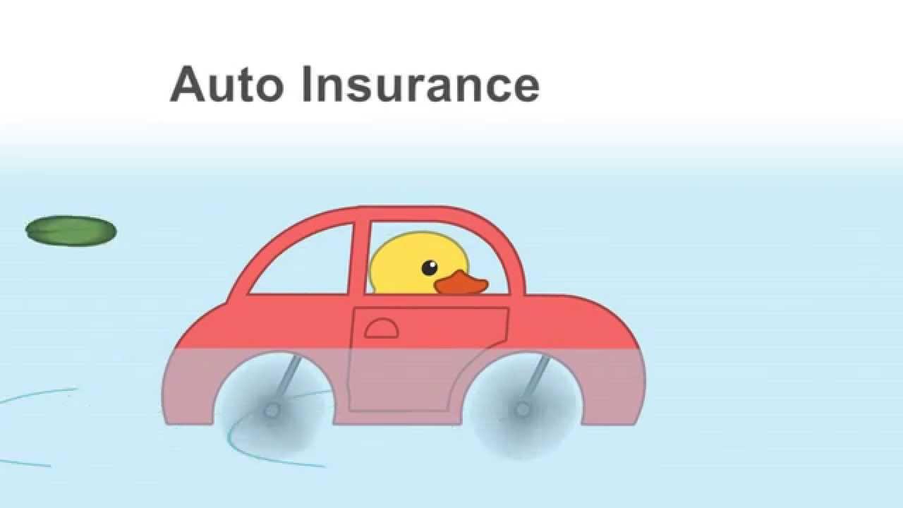 Auto Insurance Olympia Washington Call 360 352 7588 Youtube