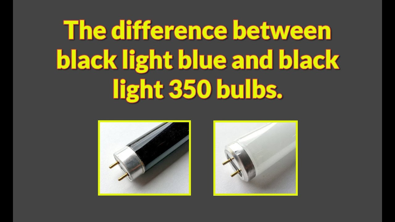Download The Difference Between Black Light Fluorescent Bulbs