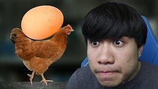 เกมไก่แบกไข่