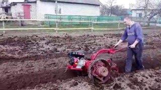 Вспашка огорода мотоблоком Беларус-09Н МТЗ ч3