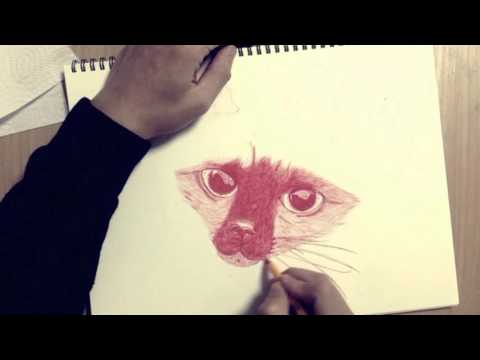 Drawing of a siamese cat with red 'BIC' pen. 샴고양이 펜 드로잉