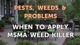 When to Apply MSMA Weed Killer