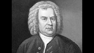 Bach Badinerie - Bwv 1067 - Harmonica - David Herzhaft