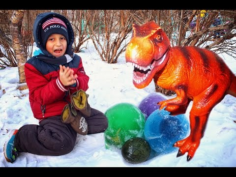 Dinosaurs eggs. Giant