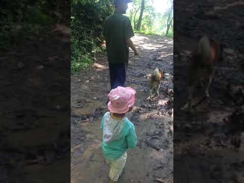Wonderland Preschool-Pokhara.