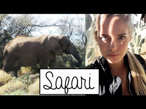 Safari in South Africa (vlog) | Cornelia