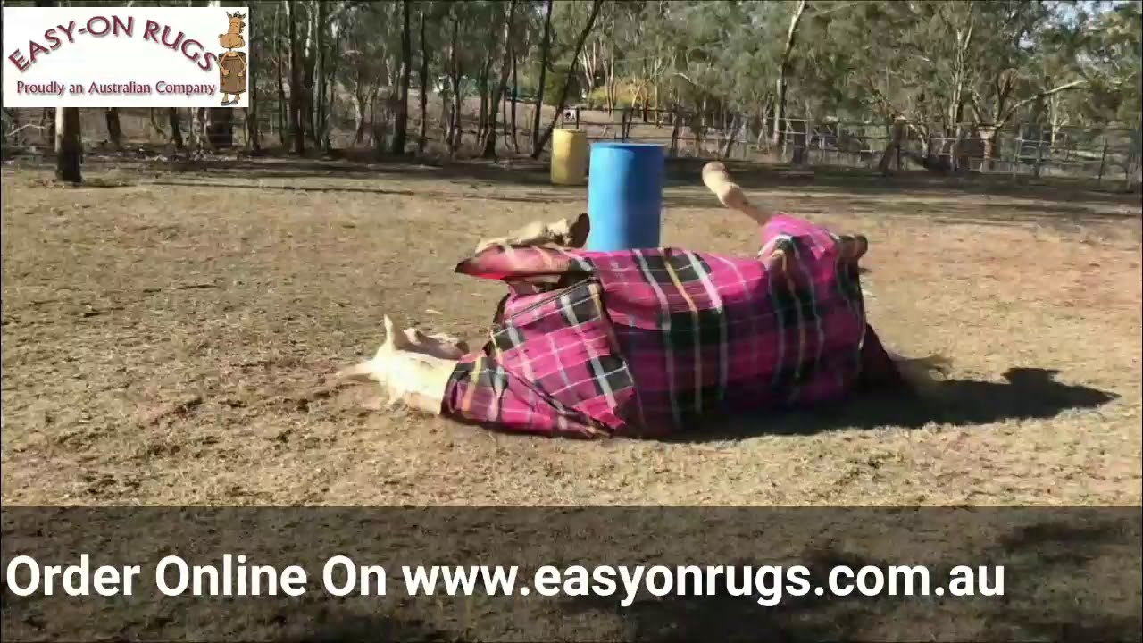 Easy On Rugs Video You