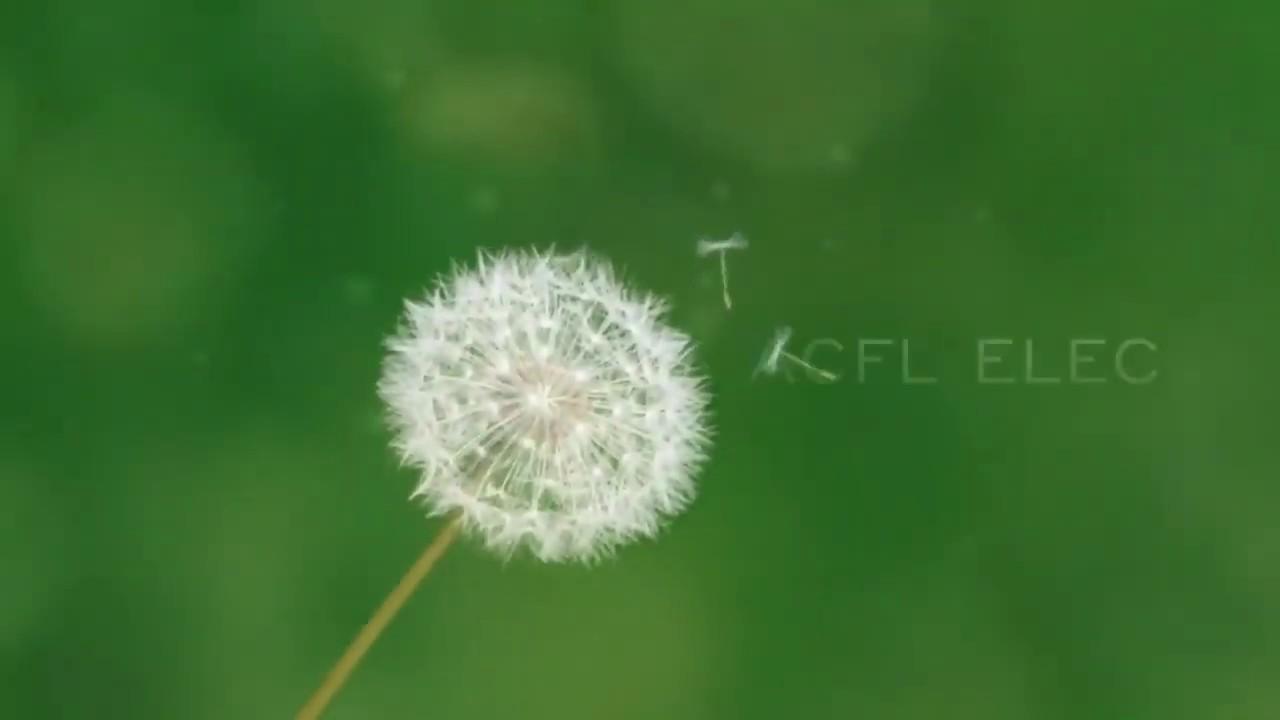 Vidéo retour sur la création d'ACFL Elec