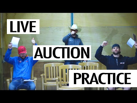 Live Auction Practice : Freestyle Bid Calling