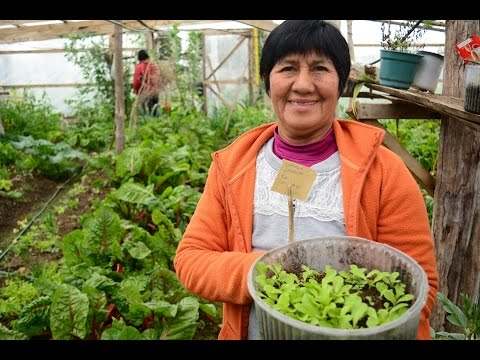 Agro-Ecological GIAHS (SIPAM) Certification by Ancud Tourism Board - Chiloe Island, Chile