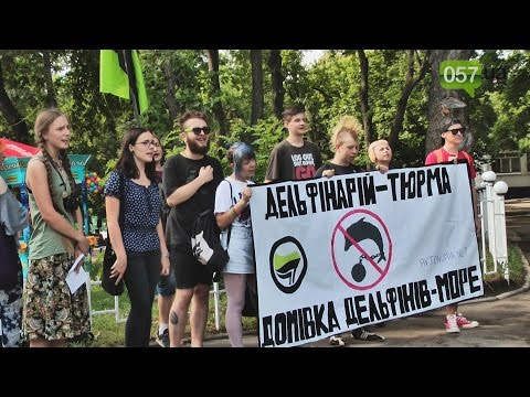 Дельфинарий - это тюрьма. Харьковчане вышли на пикет океанариума