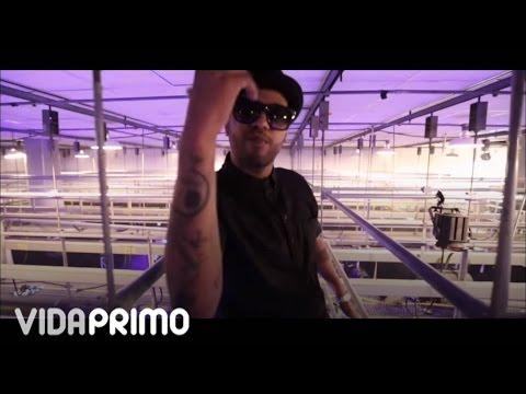 Jowell y Randy - Vamo' a Busal (De Camino Al Choliseo Edition) [Official Video]