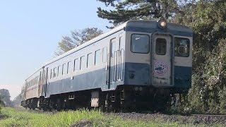 ひたちなか海浜鉄道 「ありがとうキハ222」