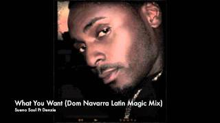 Sueno Soul Ft Denzie - What You Want - Dom Navarra Latin Magic Mix