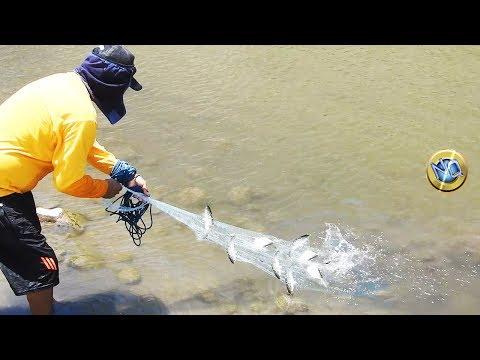Wow Memancing Dengan Lancar Di Mulut Sungai
