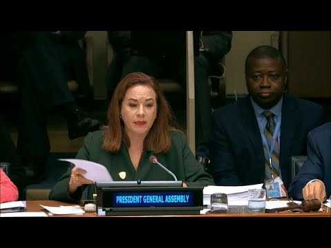 General Assembly President on Disarmament and International Security