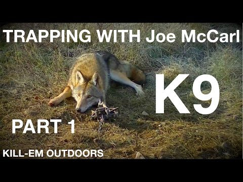 Trapping Pennsylvania K9 With Joe McCarl