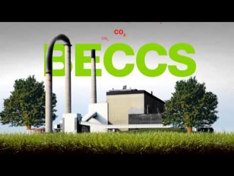 WWF Climate Solver Biorecro