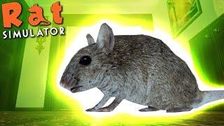 NUCLEAR RAT ATTACK! ☢️ Rat Simulator Gameplay #1 🐀