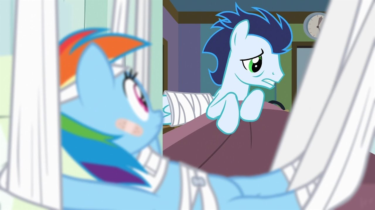Soarin You Sure Have Nice Friends Noponys Been By To