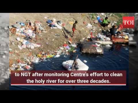 SC asks NGT to monitor work to clean the Yamuna