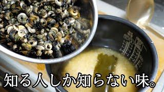 大量のカタツムリみたいな貝の中身をくり抜いて。米と炊く料理を思いついた!!!