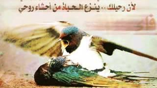 اسلام -( طير جريح ) اغنيه روعه نادره جدا