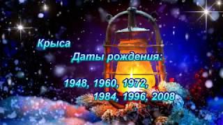 ВОСТОЧНЫЙ ГОРОСКОП 2019 - КРЫСА
