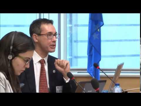 Citizen Matters Views & Perspectives on EU Citizenship 2 (Richard Butterwick)