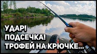 Трофейная ЩУКА в корягах яндекс погода и личная радуга Щука и окунь на спиннинг Рыбалка в Тюмени