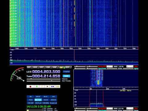 Oddity station 4214khz