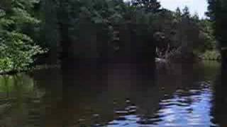 Hollow River Boat Ride - Dorset, Lake of Bays