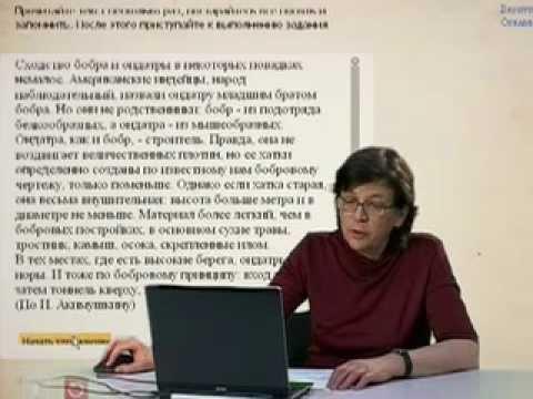 Тренажер по русскому языку Словарные слова 1 2 класс