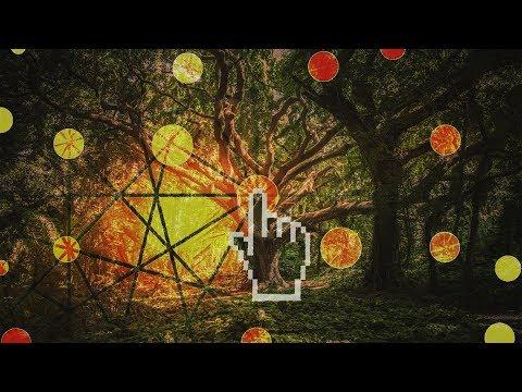 Internet of TREES - czyli jak rozmawiają drzewa?