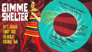 Andre Williams - You Got It And I Want It