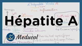 Hépatite A: symptômes, sérologie de l'hépatite A, vaccin et traitement