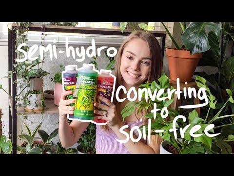 Converting a Plant to Passive Hydroponics + How I Prepare my Nutrients!