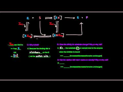 Enzyme Inhibition (Part 2 of 3) - Noncompetitive Inhibitors