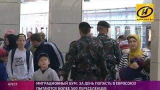 Мигранты штурмуют белорусско-польскую границу