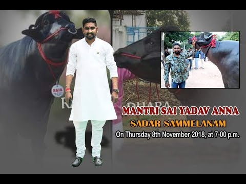 Sadar Festival 2018 | Mantri Sai Yadav Anna Sadar Celebrations | Bowenpally Sadar 2018 | Hyderabad