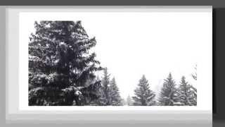 Fargo Theme