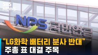 """LG화학 배터리 분사 반대"" 국민연…"