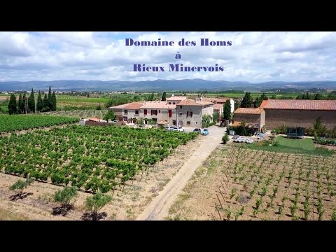 Welcome to Domaine des Homs