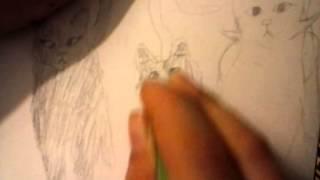 Cat draw 3 my Warrior clan cats
